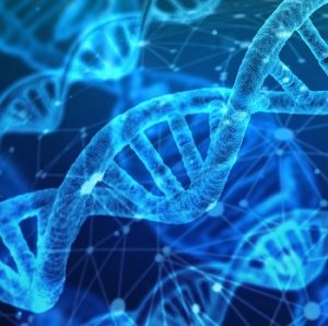 Carb Choice Gene test