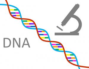 online gene test
