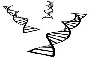DNA health tests
